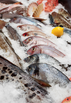 fresh-fish-ice-market-web.jpg